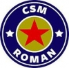 Stema CSM Roman