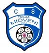 Stema Dacia Mioveni